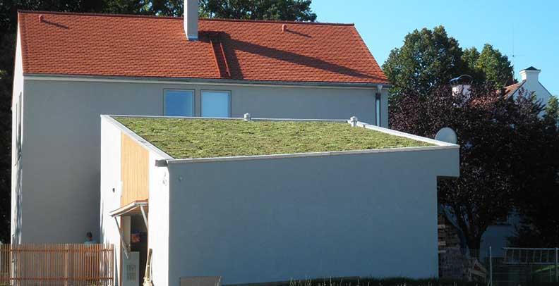 Fabulous Kosten - Dachbegrünung Selber Machen GE26